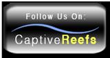CaptiveReefs.com Sponsor