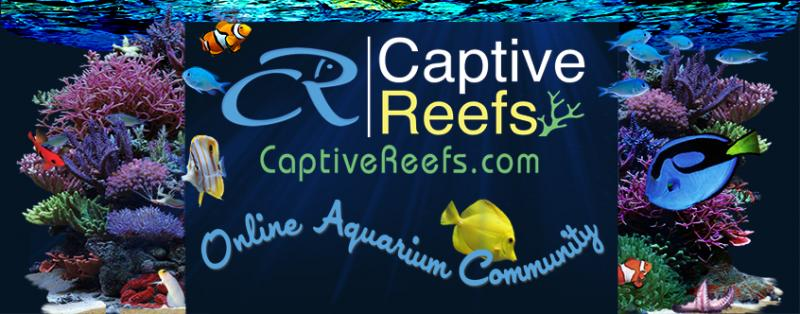 Coral Reef Aquarium - CR Announcements - January 2012 CR Newsletter
