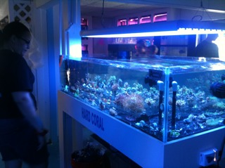 Coral Reef Aquarium - CR Announcements - Sponsor Tour - Day 2 - May 15