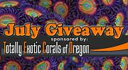 -july-reef-giveaway-teco.jpg