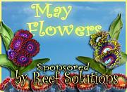 May Flowers Giveaway - sponsored by Reef Solutions-may-flowers-reef-solutions.jpg