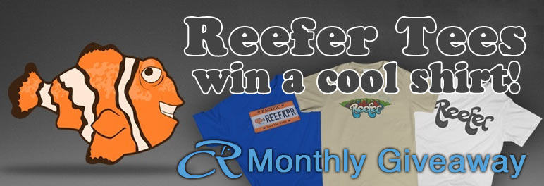Coral Reef Aquarium - CR Contests - Monthly Giveaway win an awesome Reefer Tees shirt!