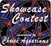 Name:  showcase-contest.jpg Views: 349 Size:  11.7 KB
