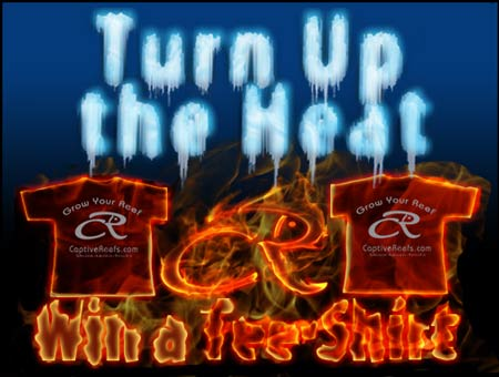Coral Reef Aquarium - CR Contests - Turn Up the Heat - Win a CR Tee Shirt