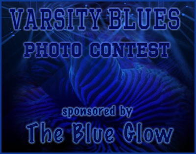 Coral Reef Aquarium - CR Contests - Varsity Blues Photo Contest sponsored by The Blue Glow