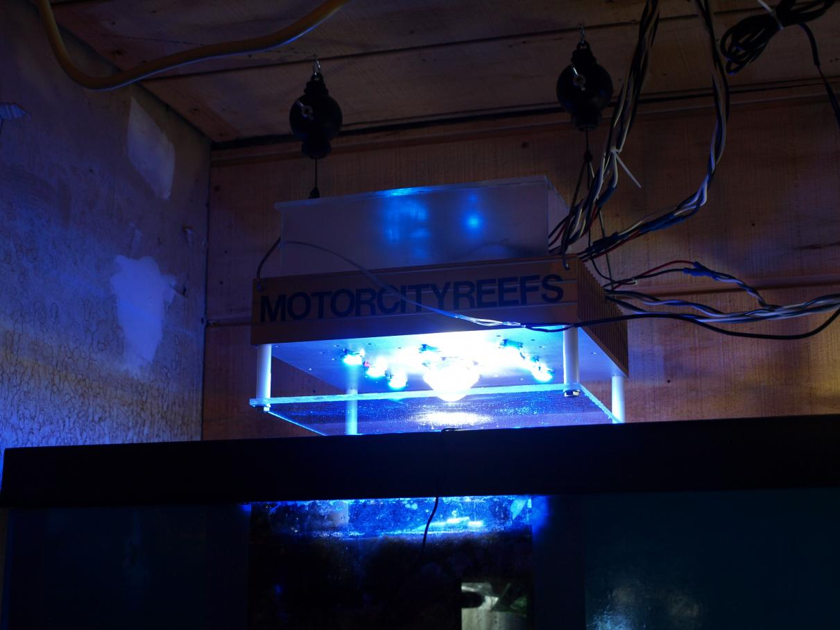 Coral Reef Aquarium - DIY Projects & Plans - going 100% led