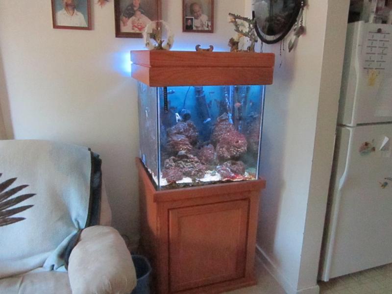 3165 pink poslpora - bigbill 80 gallon