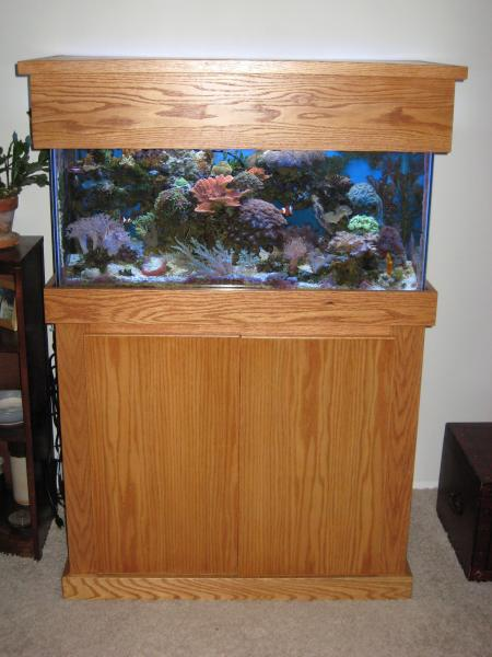 "Coral Reef Aquarium - Equipment Sales & Trades - Custom oak stand and canopy (36""x18""), T5HO and HOB overflow"