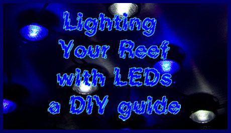 Coral Reef Aquarium - Feature Articles - Lighting your reef with LEDs - DIY (Part 1)