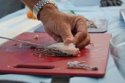 Lionfish Derby!-lionfish-hunt7.jpg