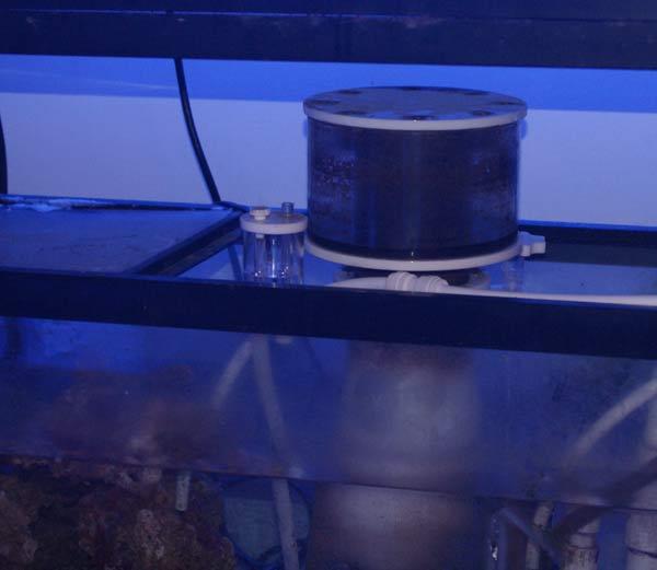 Name:  skimz-skimmer-reef-sump.jpg Views: 748 Size:  22.1 KB
