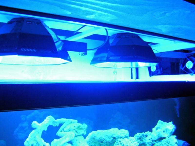 Name:  lights.jpg Views: 558 Size:  63.2 KB