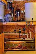 Richie Rich's Reef-reef-equipment.jpg