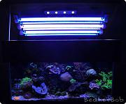 Tom@HassletMI's Mixed Reef-lights.jpg