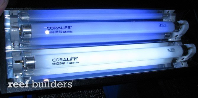 Coral Reef Aquarium - Hardware - Sweet Coralife Mini t5's!