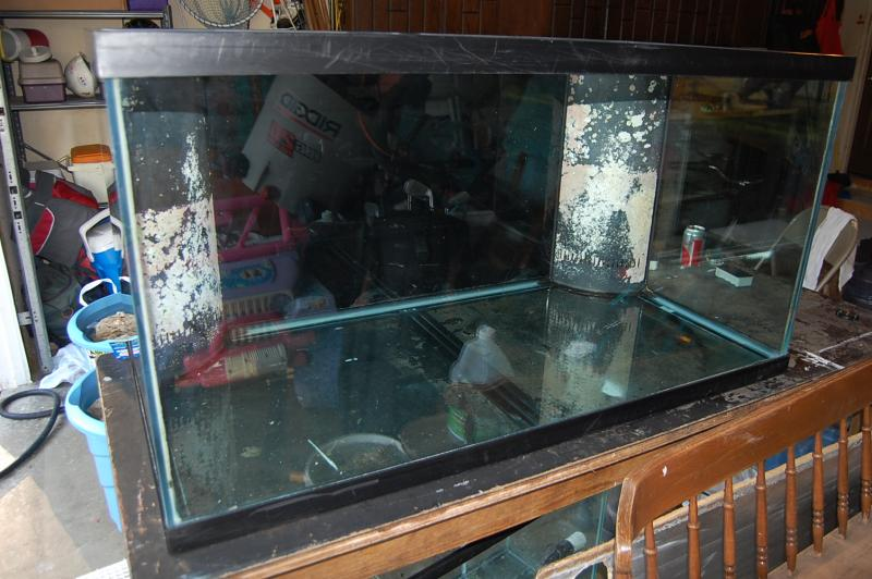Coral Reef Aquarium - Member's Reefs - Jim's 120 Reef Tank Build  : )