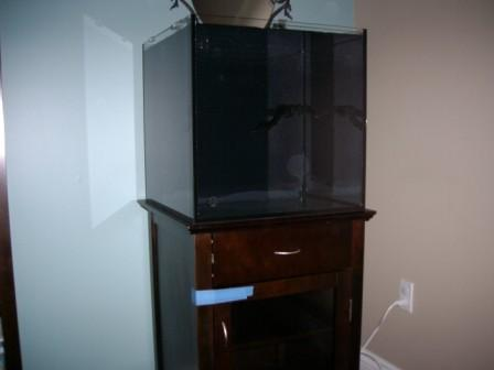 Coral Reef Aquarium - Member's Reefs - New Solan 34g - Work in Progress