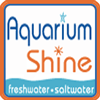 Aquarium Shine - Santa Dropped Off His Little Helpers Here At Aquarium Shine
