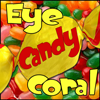 Eye Candy Coral - wed night ebay action check it out