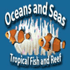 Oceans and Seas - 38th anniversary sale
