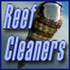Reef Cleaners - Using water from the Beach
