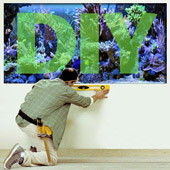Reef Aquarium DIY Projects &amp; Plans