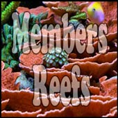 Reef Aquarium Member's Reefs
