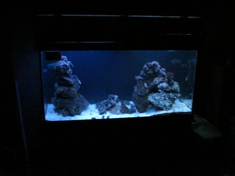picturephp?albumid217&amppictureid1297 - Bk's 90 gallon two point ohhhh