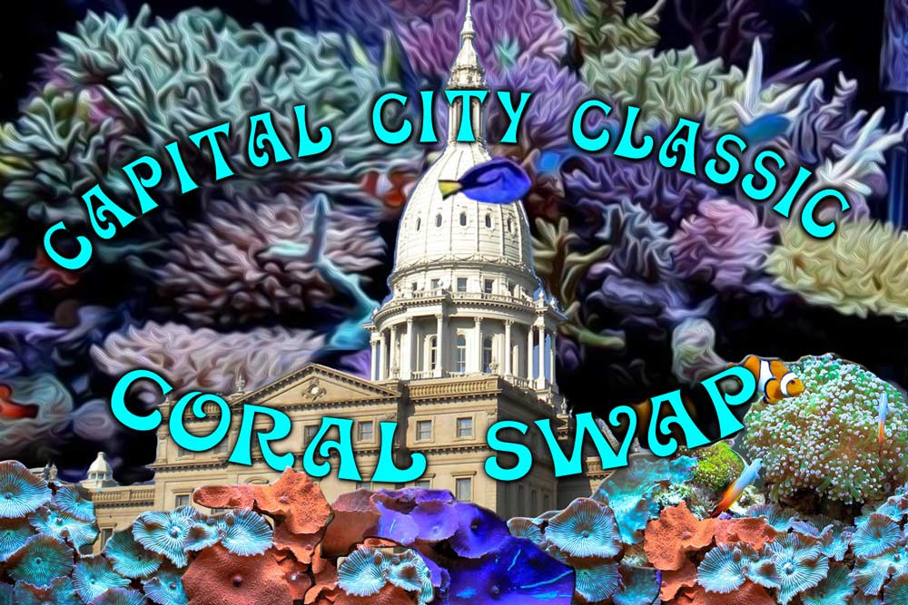 capital-city-swap.jpg