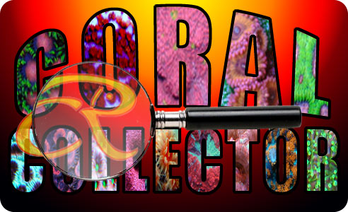 coralcollector lg - Introducing CR Coral Collector!
