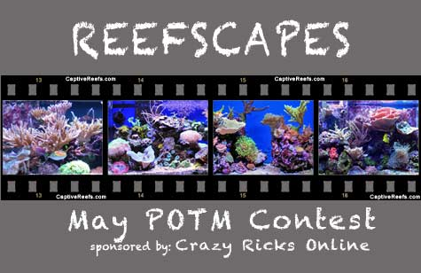 potm reefscapes lg - May POTM - sponsored by Crazy Ricks Online
